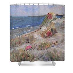 Dune View Shower Curtain