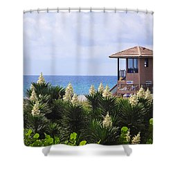 Dune Yucca Shower Curtain