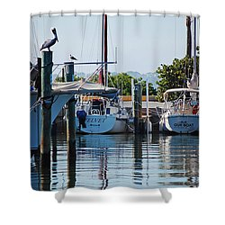 Duneden Fl. Shower Curtain by Robert Meanor