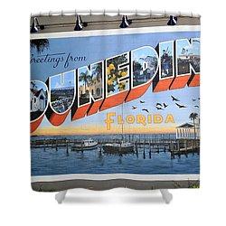 Dunedin Florida Post Card Shower Curtain