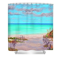 Dunes Beach 2 Shower Curtain