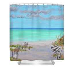 Dunes Beach Shower Curtain