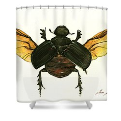 Dung Beetle Shower Curtain by Juan Bosco