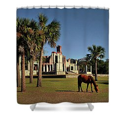 Shower Curtain featuring the photograph Dungeness  by Jessica Brawley