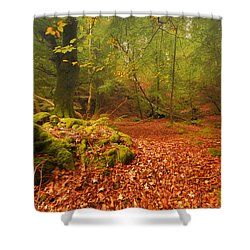 Dunstaffnage Castle Gardens Shower Curtain