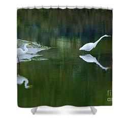duo Shower Curtain by Sheila Ping