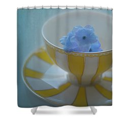 Duplicity Shower Curtain