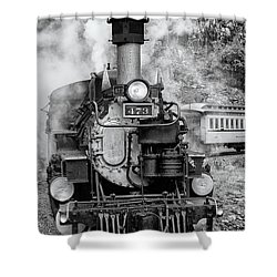 Durango Silverton Train Engine Shower Curtain
