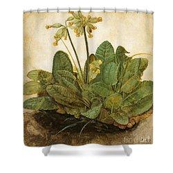 Durer Tuft Of Cowslips Shower Curtain by Granger