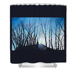 Durfee Street Chapel Shower Curtain
