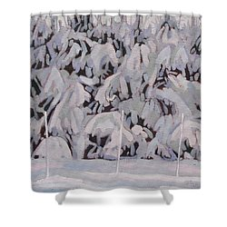 During The Storm Shower Curtain