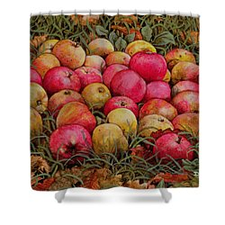 Durnitzhofer Apples Shower Curtain