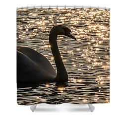 Dusk Descends On The Waters Shower Curtain