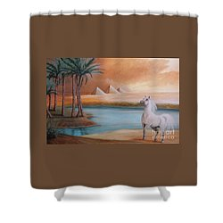 Dust Storm Shower Curtain by Corey Ford