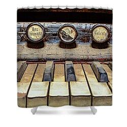 Dusty Old Keyboard Shower Curtain