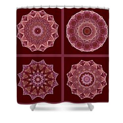 Dusty Rose Mandala Fractal Set Shower Curtain