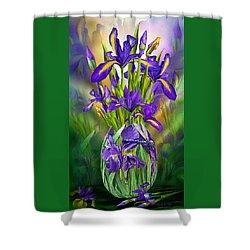 Dutch Iris In Iris Vase Shower Curtain by Carol Cavalaris
