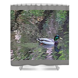Duck Patterns Shower Curtain