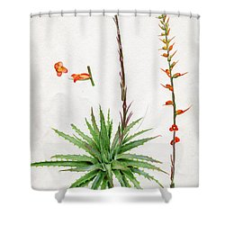 Dyckia Platyphylla Shower Curtain