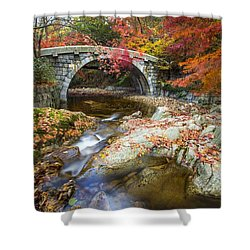Dying Colours Shower Curtain