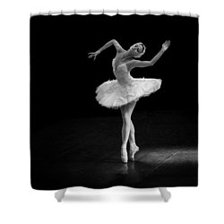 Dying Swan 7 Alternate Size Shower Curtain