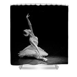 Dying Swan II Alternative Size Shower Curtain