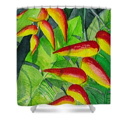 Dynamic Halakonia Shower Curtain
