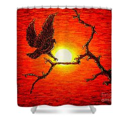 Eagle B2 Shower Curtain