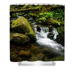 Eagle Creek Cascade Shower Curtain