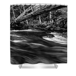 Eagle Creek  Shower Curtain