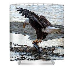 Eagle Dinner Shower Curtain