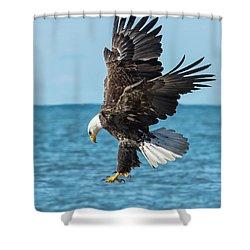 Eagle Dive Shower Curtain
