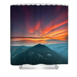 Eagle Eye Shower Curtain by Evgeni Dinev