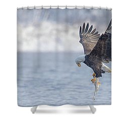 Eagle Fishing  Shower Curtain by Kelly Marquardt