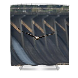 Eagle Flight At Conowingo Dam Shower Curtain