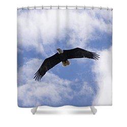 Eagle Flight Shower Curtain
