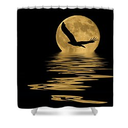 Eagle In The Moonlight Shower Curtain by Shane Bechler