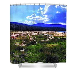Eagle Lake Afternoon Shower Curtain