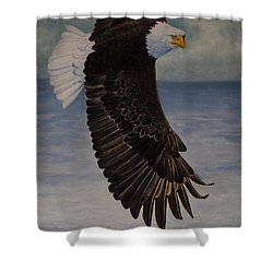 Shower Curtain featuring the painting Eagle - Low Pass Turn by Roena King