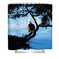Eagle - Mt Baker - Eagles Nest Shower Curtain