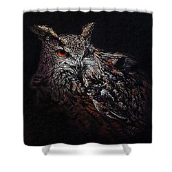 Eagle Owl Shower Curtain