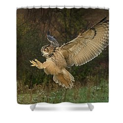 Eagle-owl Wings Back Shower Curtain