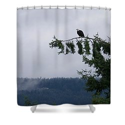 Eagle Powers Shower Curtain