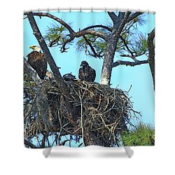 Shower Curtain featuring the photograph Eagle Series Baby by Deborah Benoit