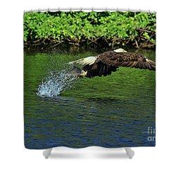 Shower Curtain featuring the photograph Eagle Series Fish Catch by Deborah Benoit
