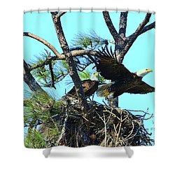 Shower Curtain featuring the photograph Eagle Series The Nest by Deborah Benoit