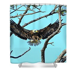 Shower Curtain featuring the photograph Eagle Series Wings by Deborah Benoit