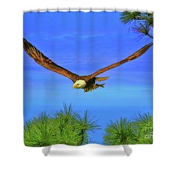 Shower Curtain featuring the photograph Eagle Series Through The Trees by Deborah Benoit