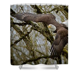 Eagle Take Off Shower Curtain