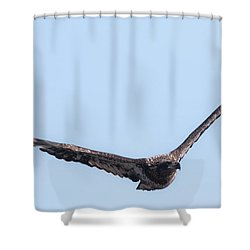 Eagle Watch 2017 Shower Curtain by Ricky L Jones